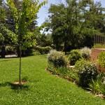 Aracena 16-06-2011 001