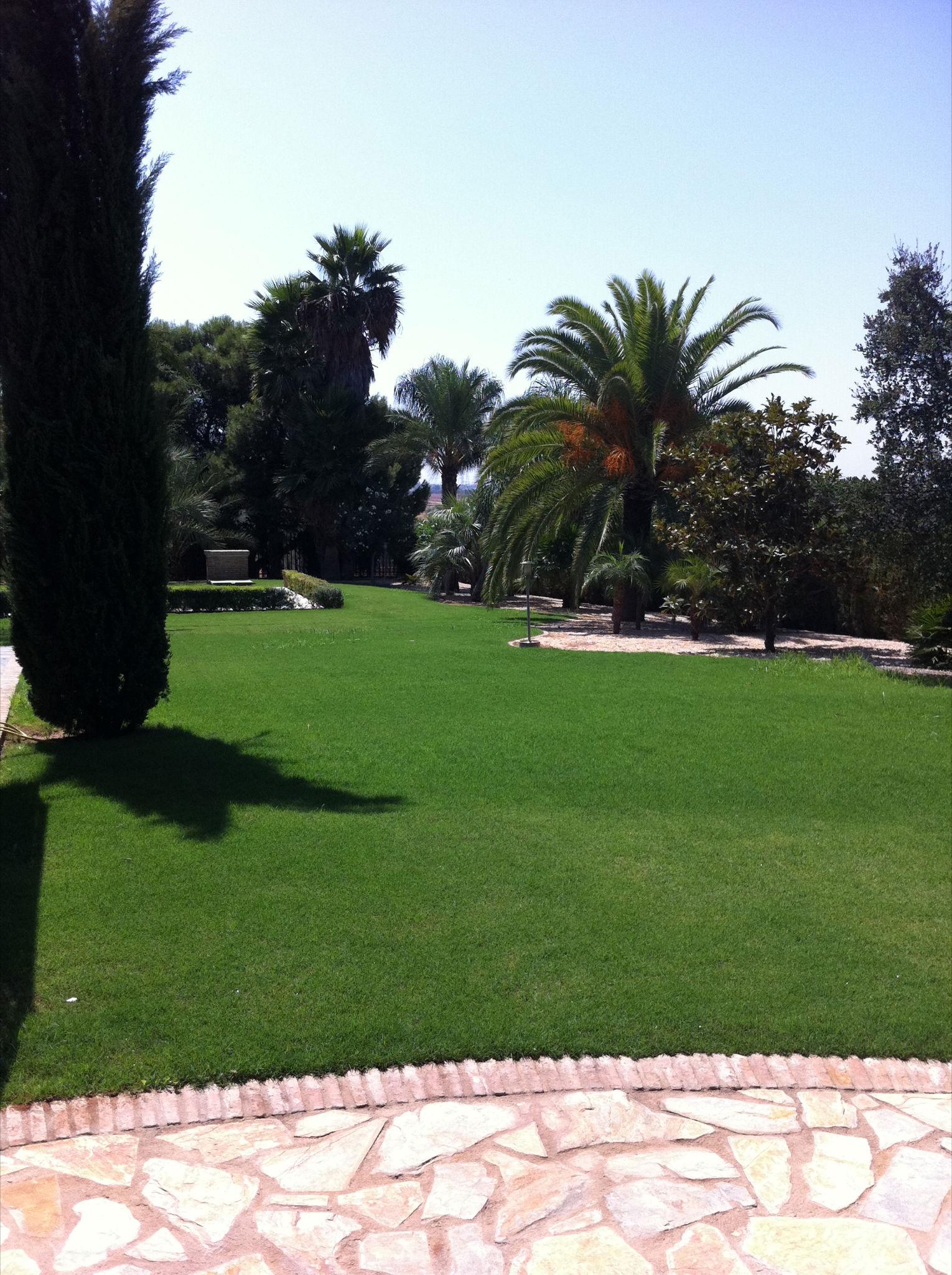 Cuidado y mantenimiento de jardines babilonia - Cuidado de jardines ...