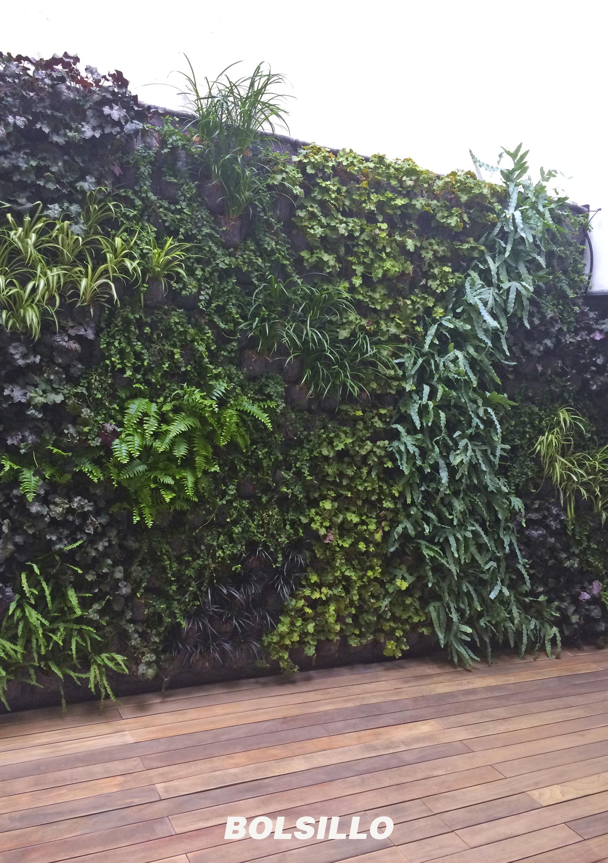 Realizaci n de jardines verticales en sevilla babilonia - Jardines verticales sevilla ...